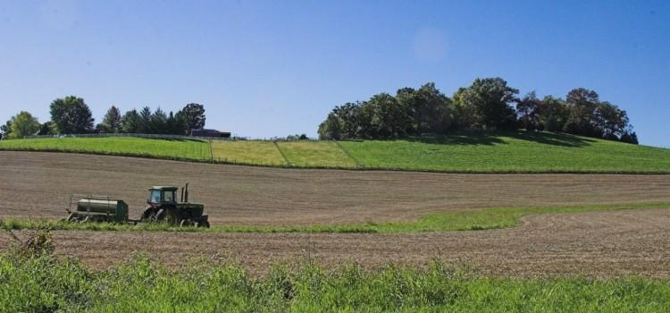 Corporate Victory Will 'Screw' Local Farmers as Amendment Passes in Missouri
