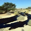 'Worst' Ecological Disaster in Israel's History as Pipeline Spews Oil