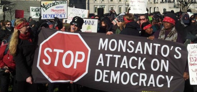 Farmers, Consumers Challenge Monsanto-Backed GMO Bill Designed to Keep Public in the 'DARK'