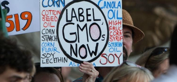 'Monsanto's Dream': Pro-GMO DARK Act Comes to Congress