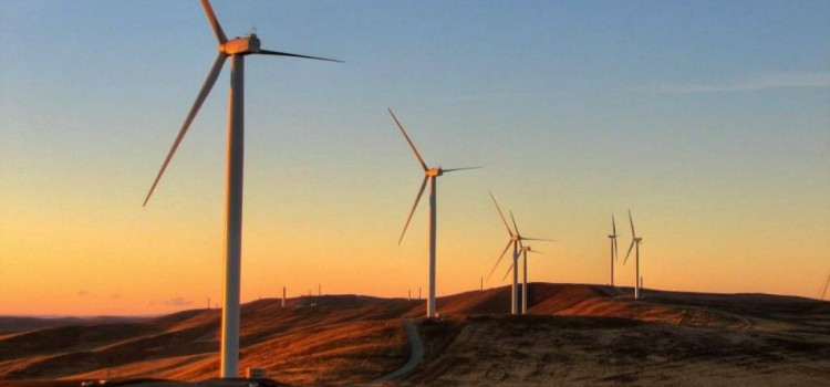 With Wind Prices at a Record Low, Is the Clean Energy Revolution Upon Us?